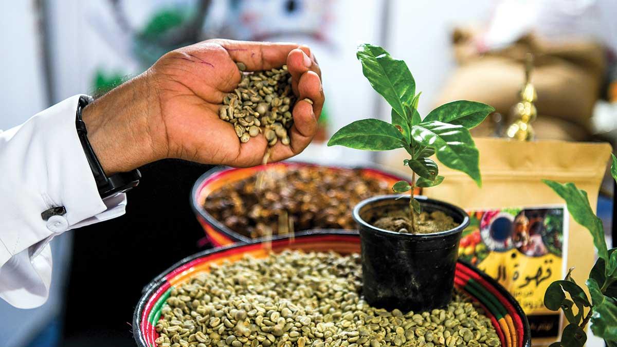 Aramco citizenship efforts help build up Jazan farmers