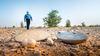 Inspirational replanting of desert biodiversity in Haradh