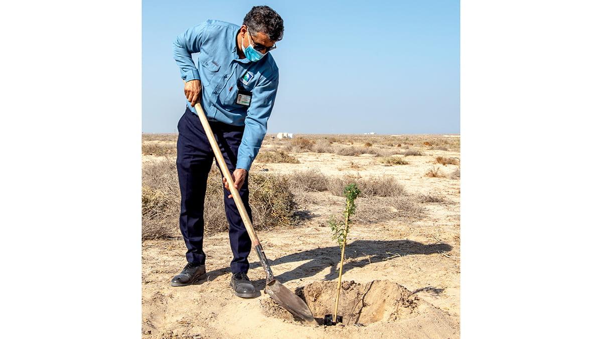 Aramco plants native trees at Tanajib Sanctuary