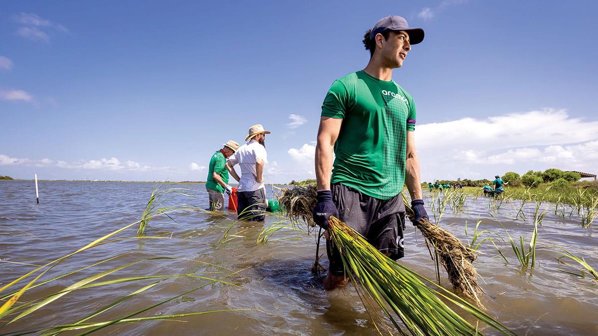 Volunteers wade into water to restore Galveston Bay